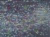 n-26-huile_sur_toile_150x150cm_2003