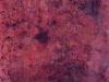 n-60-huile_sur_toile__170x170cm_2007