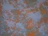 n-108_huile_sur_toile_100x100cm_2009