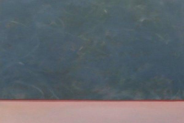 tableau 176-17- 60x60cm-huile-sur-toile-2017